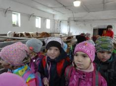 Projektový den mimo ŠD - Farma